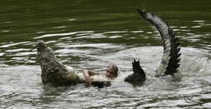 Phân tích bài Bắt sấu rừng U Minh Hạ