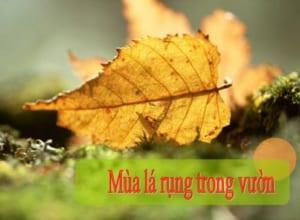 Nội dung và nghệ thuật bài Mùa lá rụng trong vườn