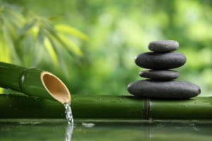 Nghị luận xã hội về lối sống giản dị