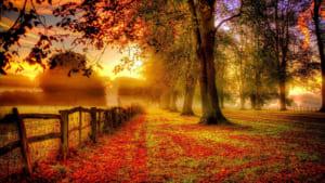 Phân tích bài thơ Đây mùa thu tới của Xuân Diệu